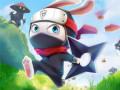 Spiele Ninja Rabbit
